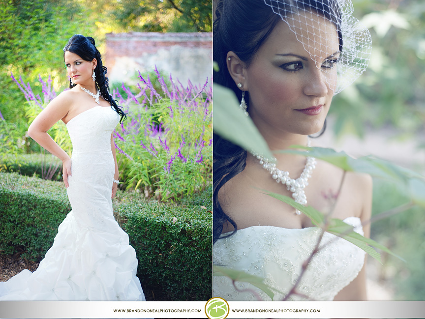 Mehgan_Cotton_Bridals-88