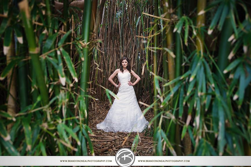 Jungle_Gardens-04