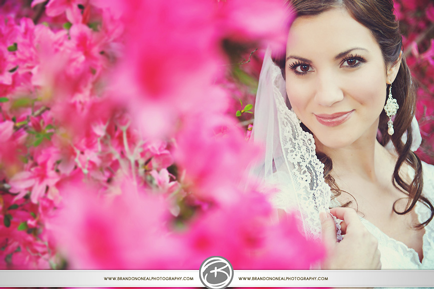 Jungle_Gardens_bridal-010