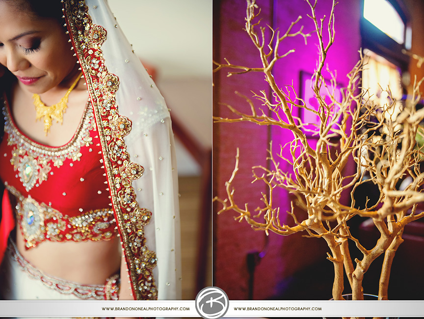New_Orleans_Indian_Wedding027